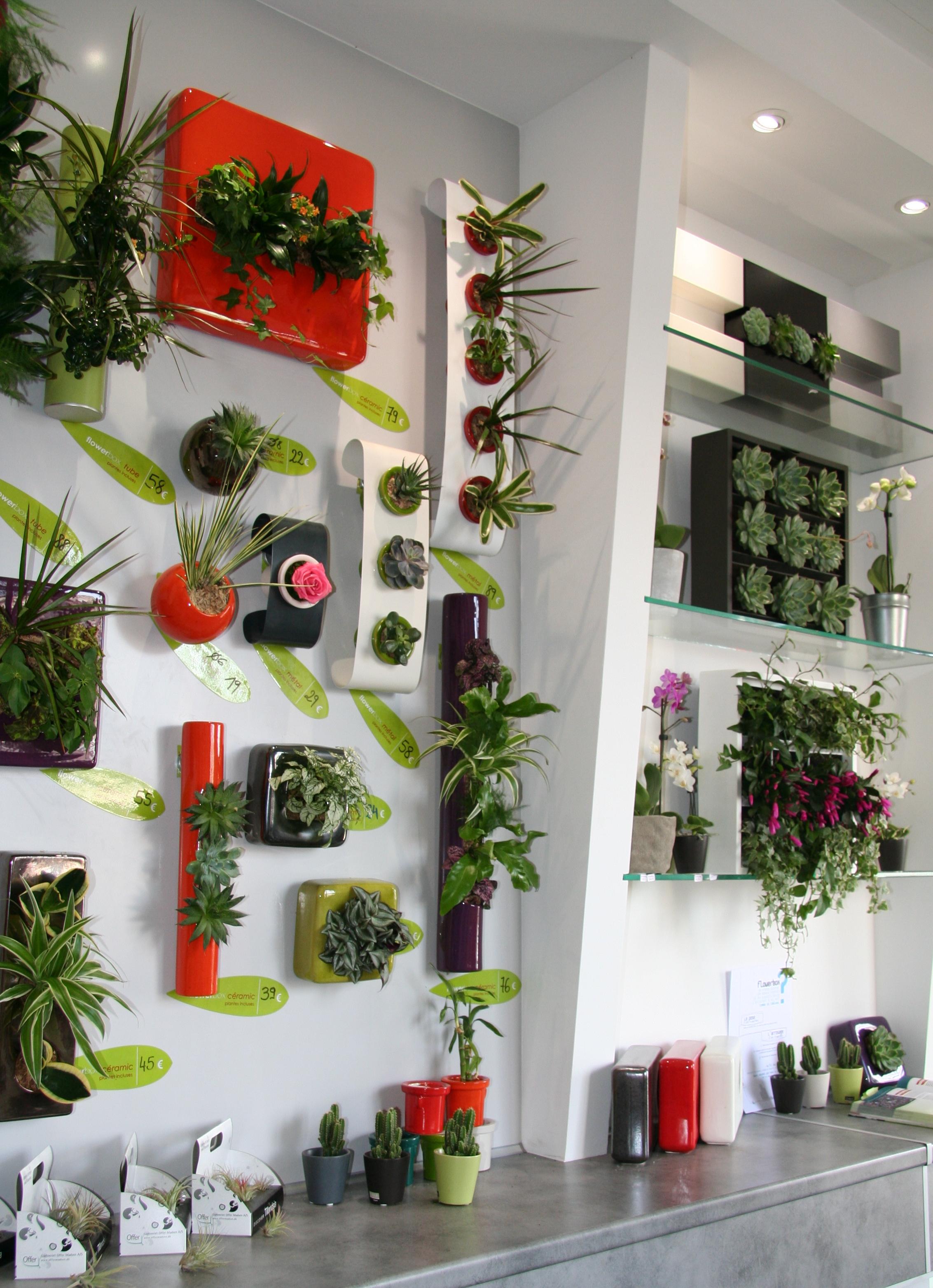 Les Jardins de To - Tableaux végétaux naturels et stabilisés sur Marseille  6ème. Décoration végétale 1b6897618d1