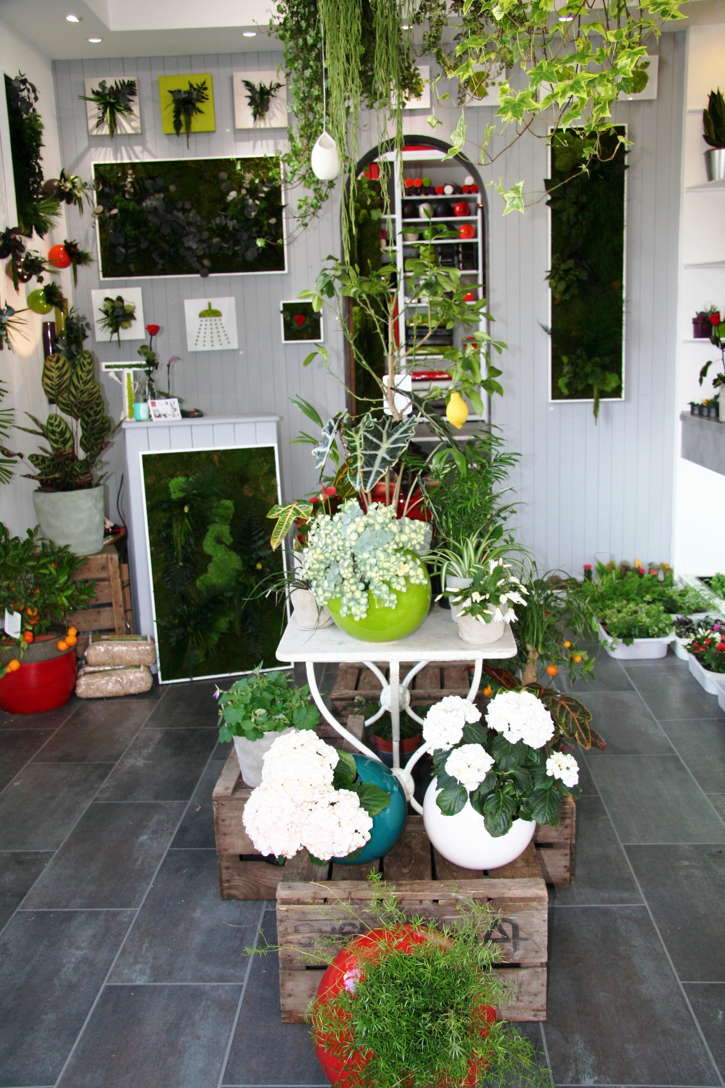 les jardins de to tableaux v g taux naturels et stabilis s sur marseille 6 me d coration. Black Bedroom Furniture Sets. Home Design Ideas